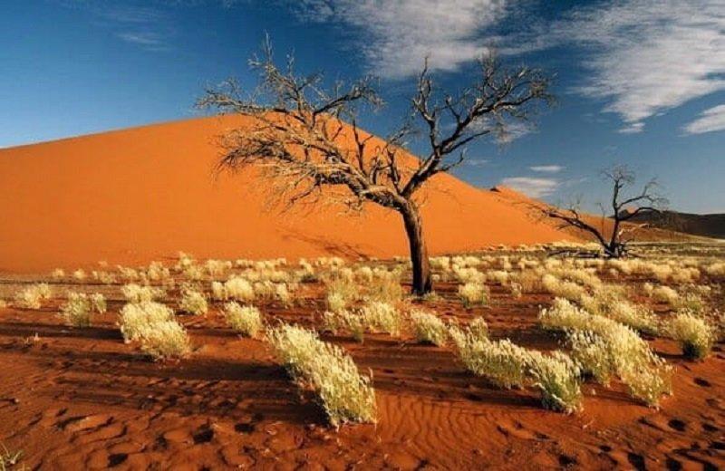 sossusvlei-namibia